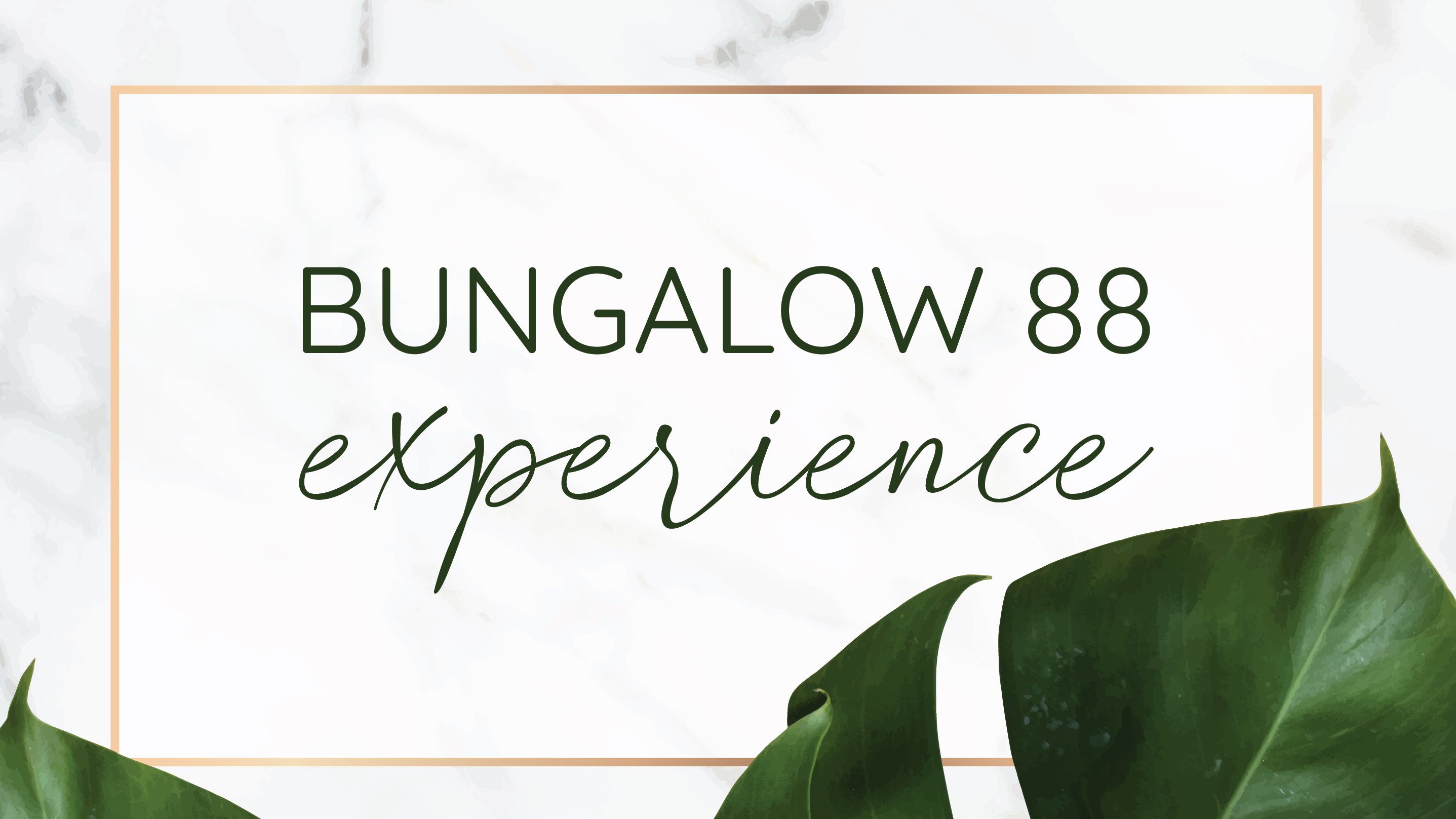 BUNGALOW 88 Experience